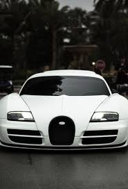 bugatti veyron top speed 771 best bugatti images on pinterest bugatti veyron car and