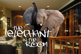 elephant living room the echo chamber the elephant in the living room radical islam