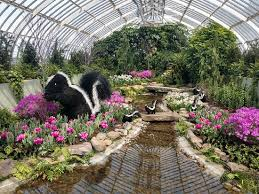 Botanical Gardens Pittsburgh Img 20180322 135249995 Hdr Large Jpg Picture Of Phipps