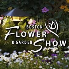 boston flowers boston flower show bosflowershow