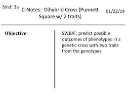 Dihybrid Cross Punnett Square Worksheet Dihybrid Punnett Squares You Are A Product Of Your Family And Your