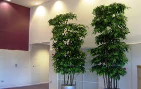 plant cheap artificial plants enchanting wholesale artificial