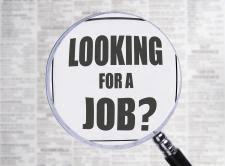 mckee iga job application