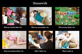 Housewife Meme - image 250868 what people think i do what i really do know