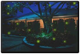 firefly lights by firefly magic fireflies lighting