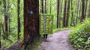 wildwood blazes pantone greenery quilt challenge