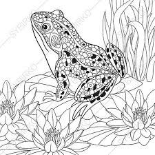 coloring pages frog zentangle doodle coloring book