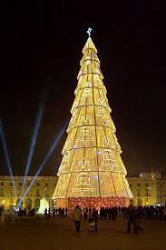 Christmas Trees In Paris Christmas Lisbon Portugal Trees Blogiism Com