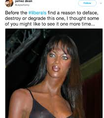 Tyra Banks Meme - tyra banks statue before the liberals find a reason to deface