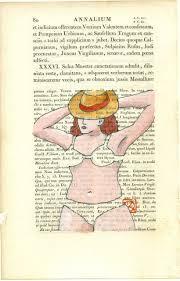 le si e d al ia house catalogue of artisanal brassieres june 2016