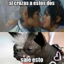 Meme Asco - que asco meme by hugoinlove memedroid