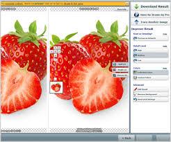 tutorial vector magic desktop edition using vector magic to create vector images stock photo secrets