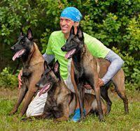 belgian malinois 101 youtube rottweiler dog photo padded leather rottweiler muzzle m71