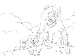 52 coloring pages images coloring books
