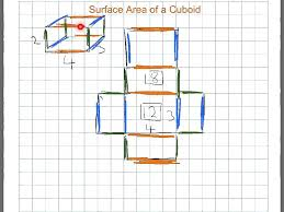 net and surface area of cuboid youtube
