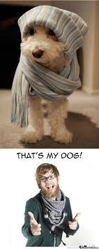 Hipster Dog Meme - hipster dog by tectonn meme center