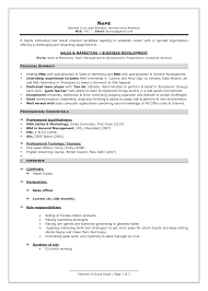 Best Resume Format For Engineers Pdf by Marketing Resume Formats Splixioo