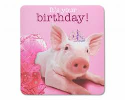 paper birthday greeting cards for anyone shop american greetings