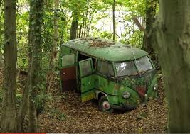 vw schwimmwagen found in forest 484 best vw images on pinterest vw beetles beetles and ladybugs