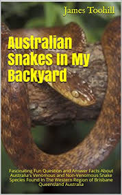 Found A Snake In My Backyard Australian Snakes In My Backyard Fascinating Fun Question And