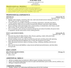 resume profile examples core java developer resume sample