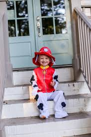 paw patrol halloween costumes party city party city paw patrol happily hughes