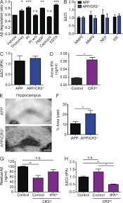 microglial complement receptor 3 regulates brain aβ levels through