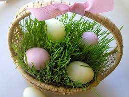 easter basket grass 6 easter basket ideas that are easy creative