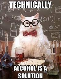 Lies Memes - chemistry cat tells no lies meme guy