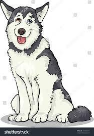 cartoon illustration funny siberian husky alaskan stock vector