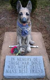 dog memorial dog photo of the day war dog memorial dog reflections