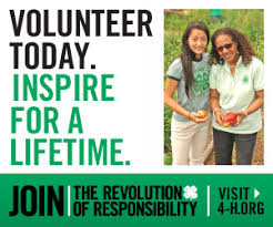 Volunteer Brochure Template by Volunteers 4 H Youth Development