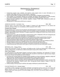 Coo Resume Examples by U0026 Airline Executive Resume
