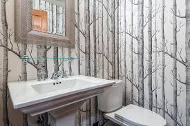 Birch Tree Decor Tremendous Birch Tree Wallpaper Decorating Ideas Gallery In
