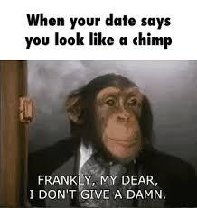 Chimp Meme - new chimp meme chimp ifunny 80 skiparty wallpaper