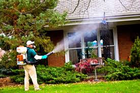 Backyard Mosquito Repellent by Mosquito Control Knoxville Tn Johnson Pest Control