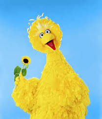 5 funniest sesame street characters sesame street characters