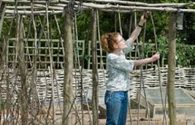 How To Build A Wooden Pergola by Bbc Gardening Gardening Guides Techniques Build A Pergola