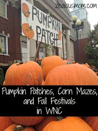 pumpkin patches corn mazes and fall festivals in wnc zealous