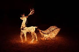 christmas lighted deer outdoor sacharoff decoration