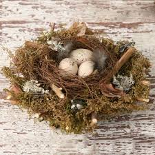 Easter Egg Nest Decorations by 82 Best Birds U0027 Nests Images On Pinterest Easter Ideas Bird