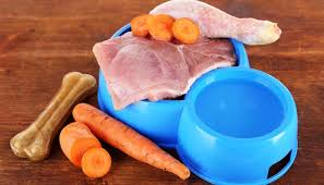 expert interview is raw dog food diet safe for dogs