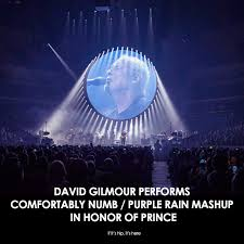 David Gilmour Comfortably Numb David Gilmour Performs Comfortably Numb Purple Rain Mashup