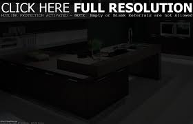 Professional Home Kitchen Design by Home Interior Design Kitchen Home Decoration Ideas