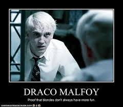 Draco Memes - draco lucius malfoy images meme 3 snjshnjdsn wallpaper and