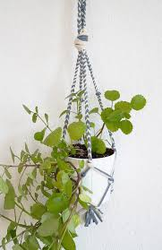 diy craft plant hanger out of t shirt yarn tutorial in english