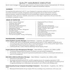 operations manager resume template resume template archaicawful audit operation manager fascinating