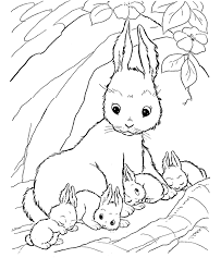 bunny coloring pages kids