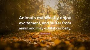 quote excitement charles darwin quote u201canimals manifestly enjoy excitement and