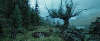 when trees attack the 11 scariest trees in fiction the 13th floor